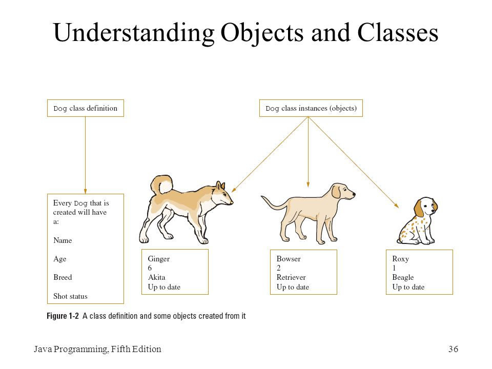 Understanding Objects and Classes