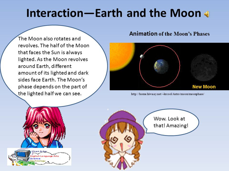 Interaction—Earth and the Moon