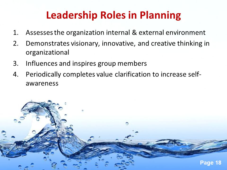 Leadership Roles in Planning
