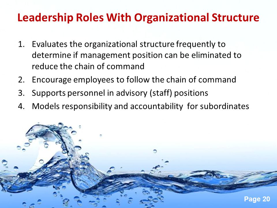 Leadership Roles With Organizational Structure