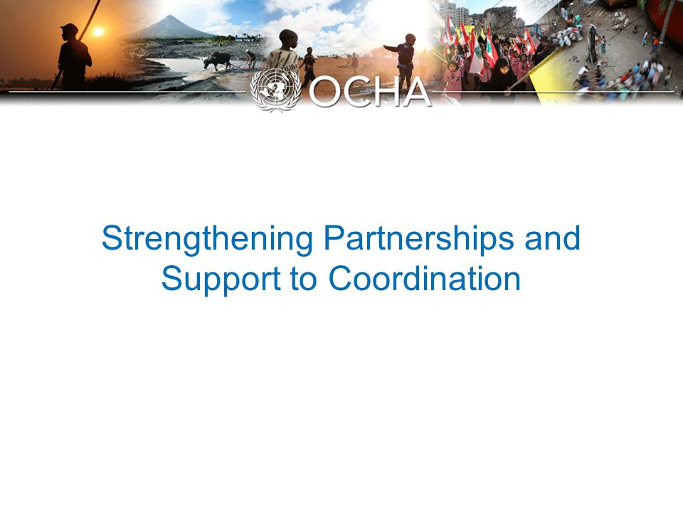 Strengthening Partnerships and Support to Coordination