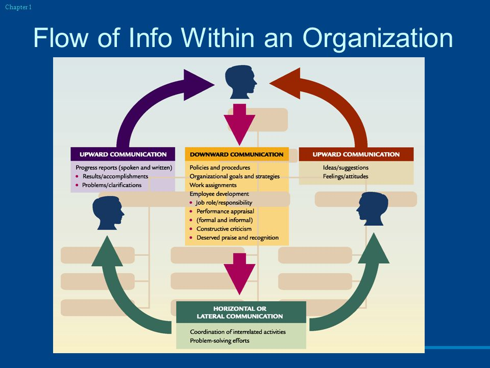 Flow of Info Within an Organization