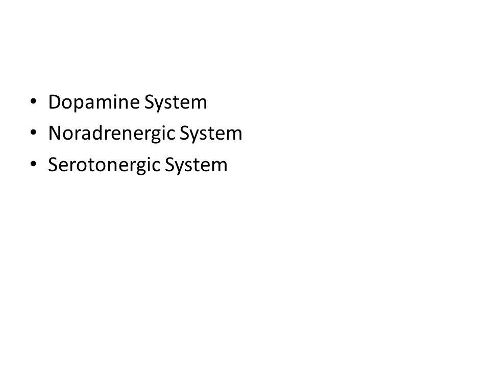 Dopamine System Noradrenergic System Serotonergic System
