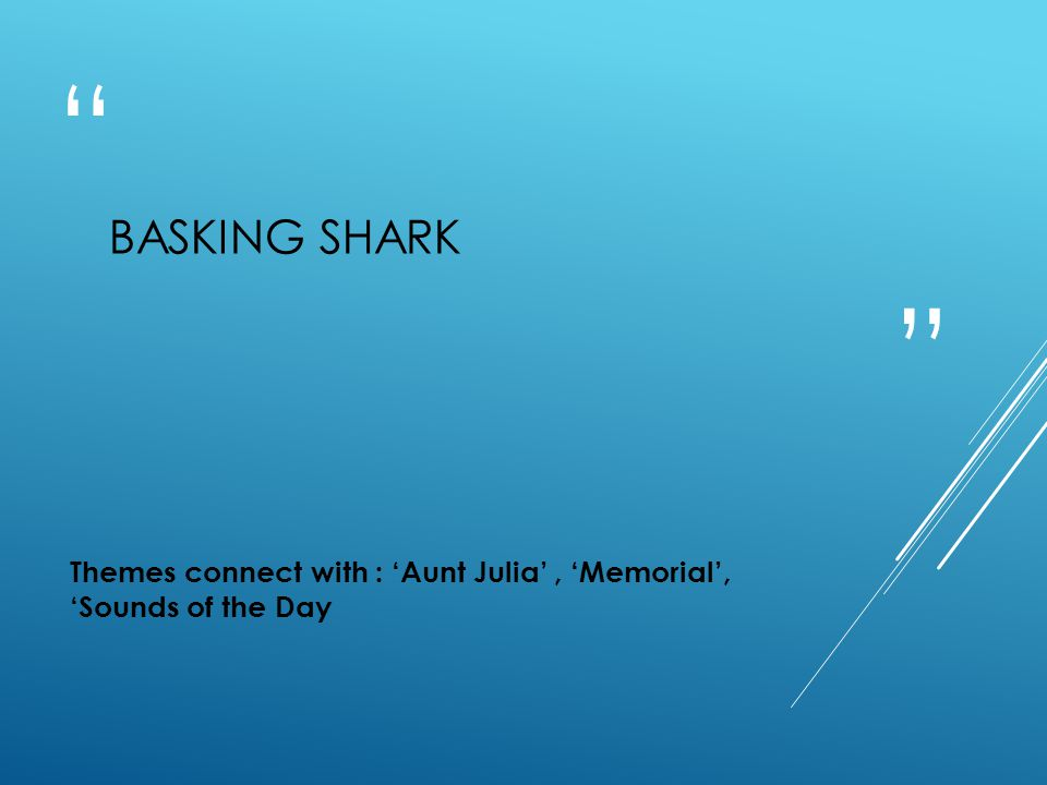 Basking Shark Themes connect with : 'Aunt Julia' , 'Memorial', 'Sounds of the Day