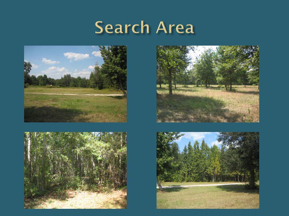 Search Area