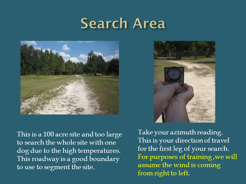 Search Area Take your azimuth reading.