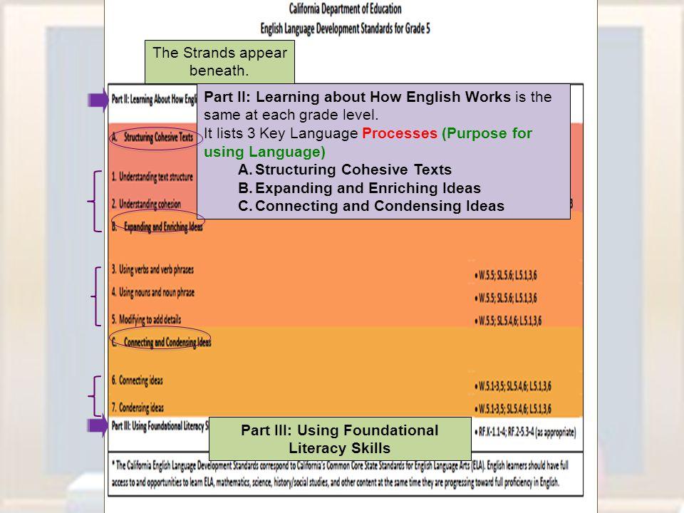 Part III: Using Foundational Literacy Skills