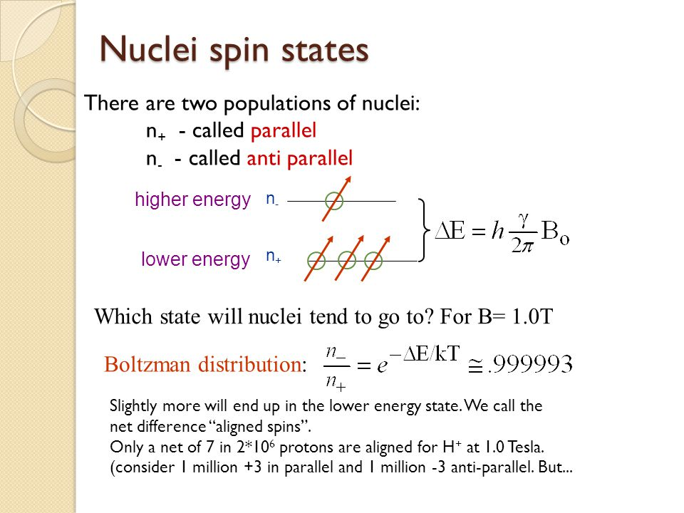 Nuclei spin states There are two populations of nuclei:
