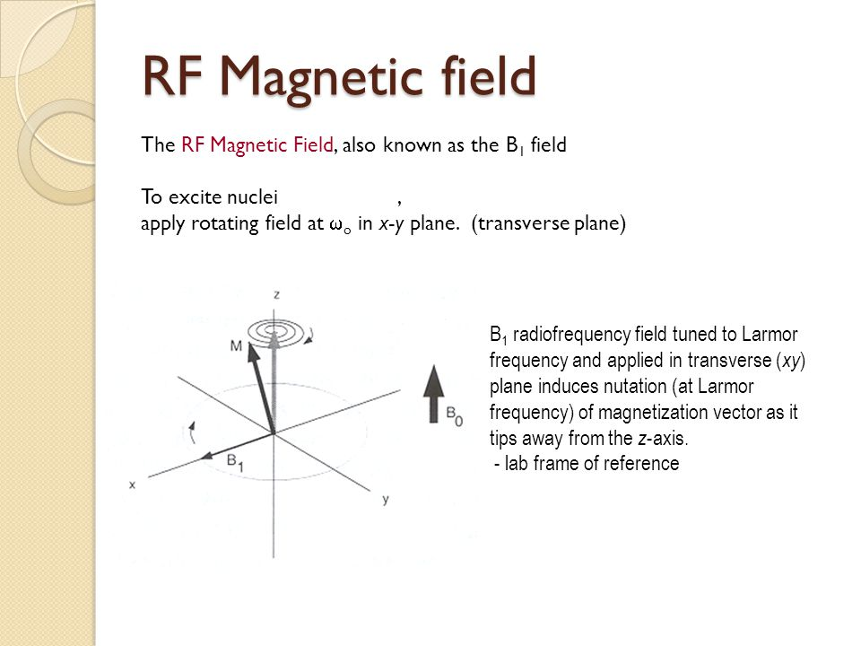 RF Magnetic field The RF Magnetic Field, also known as the B1 field