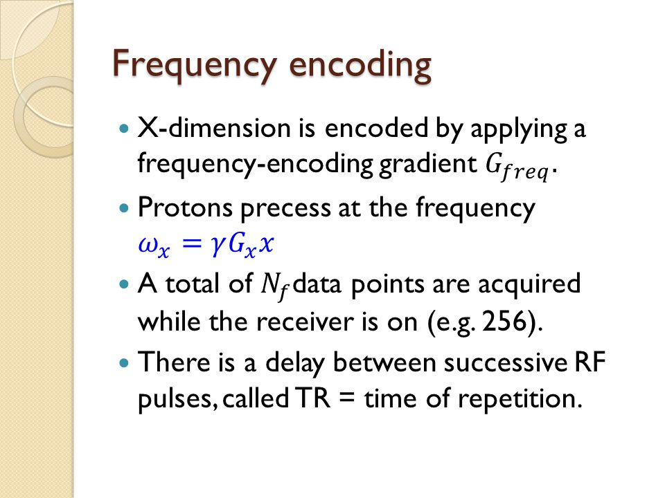 Frequency encoding X-dimension is encoded by applying a frequency-encoding gradient 𝐺 𝑓𝑟𝑒𝑞 . Protons precess at the frequency 𝜔 𝑥 = 𝛾 𝐺 𝑥 𝑥.