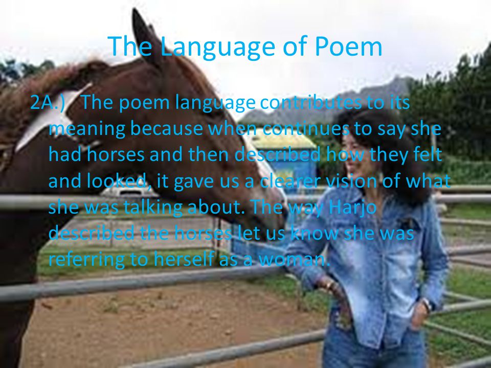 The Language of Poem
