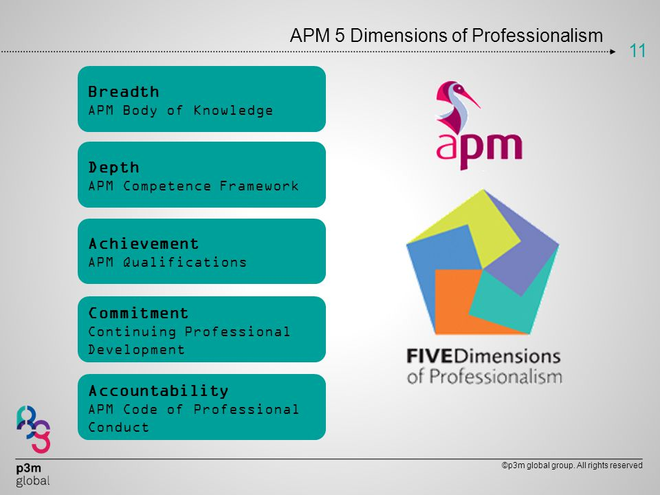 APM 5 Dimensions of Professionalism