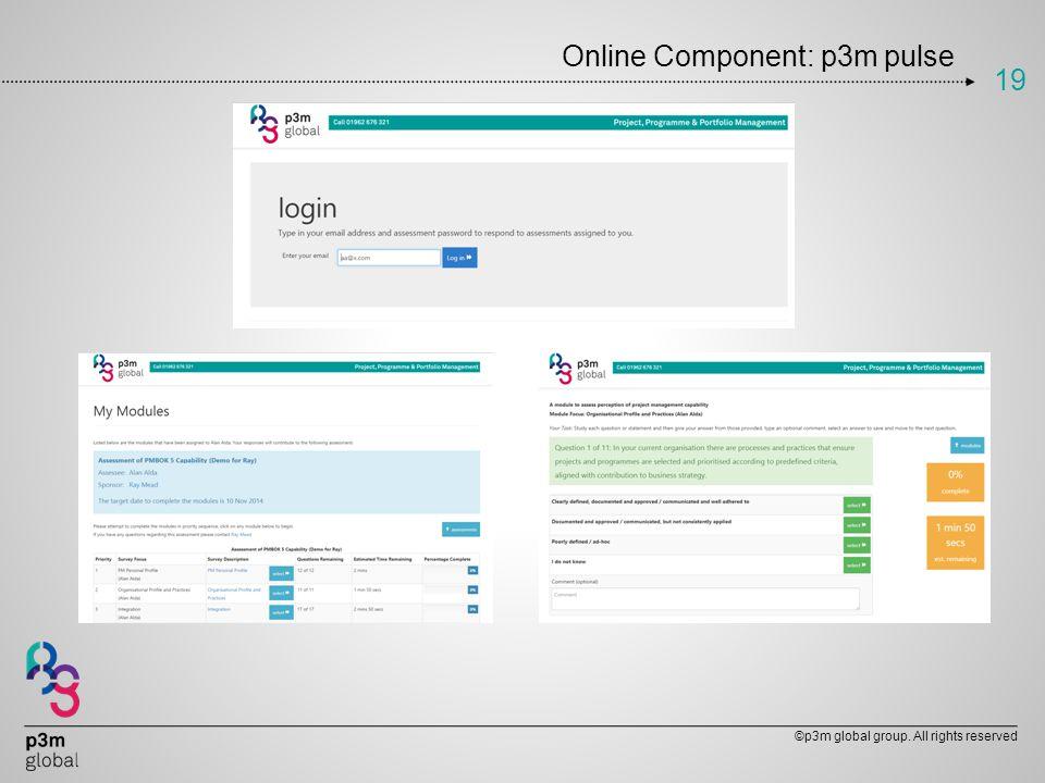 Online Component: p3m pulse