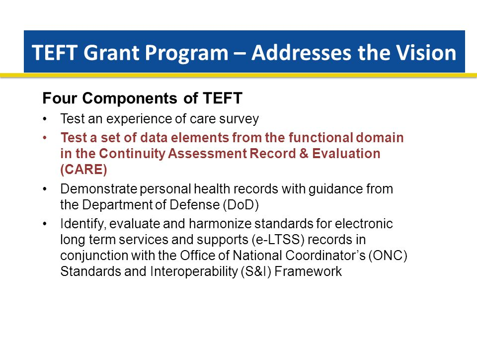 TEFT Grant Program – Addresses the Vision