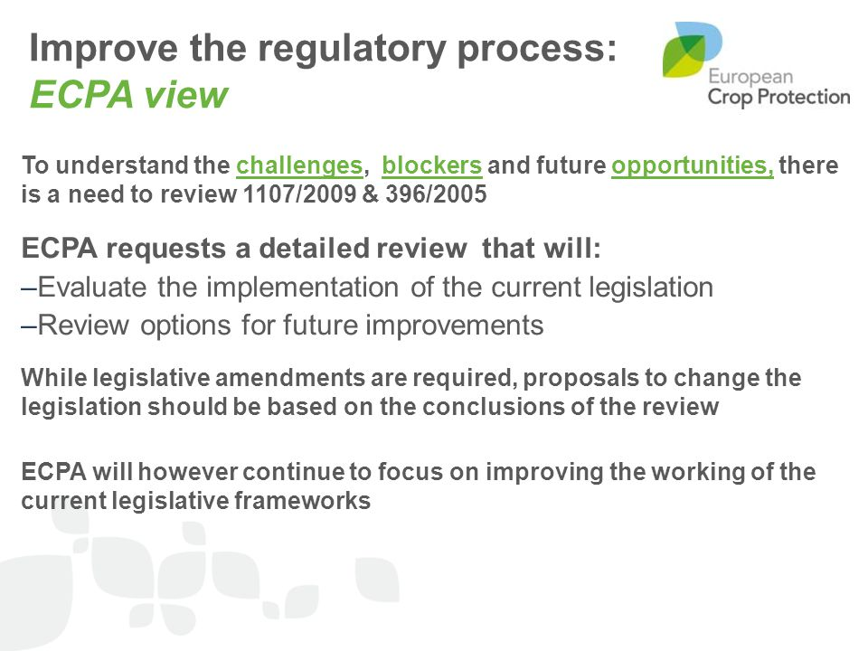 Improve the regulatory process: ECPA view