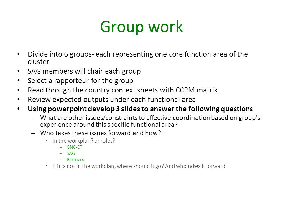 Group work Divide into 6 groups- each representing one core function area of the cluster. SAG members will chair each group.