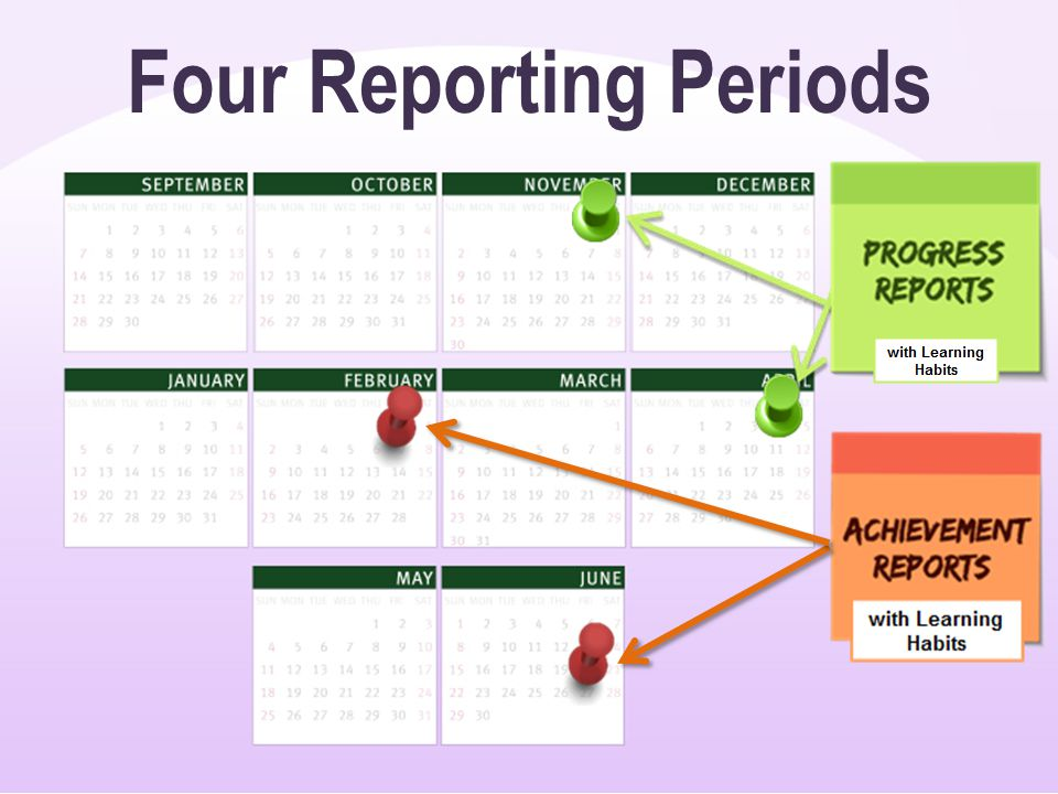 Four Reporting Periods