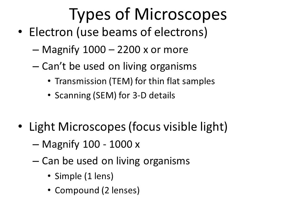 Types of Microscopes Electron (use beams of electrons)