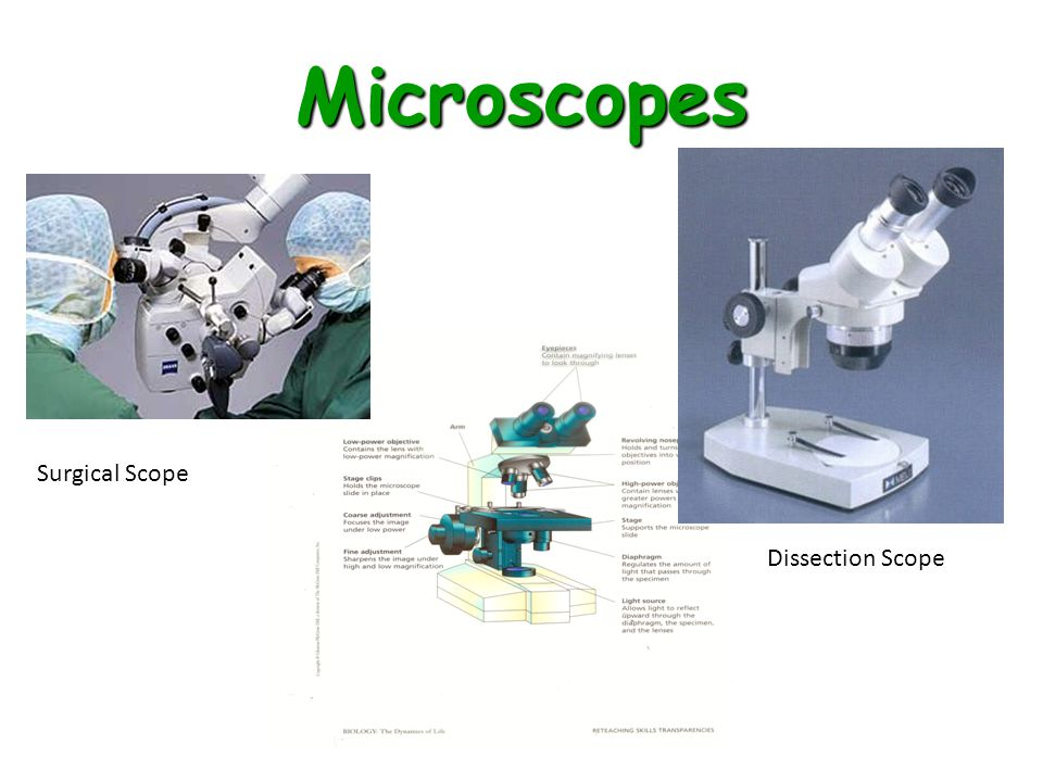 Microscopes Surgical Scope Dissection Scope