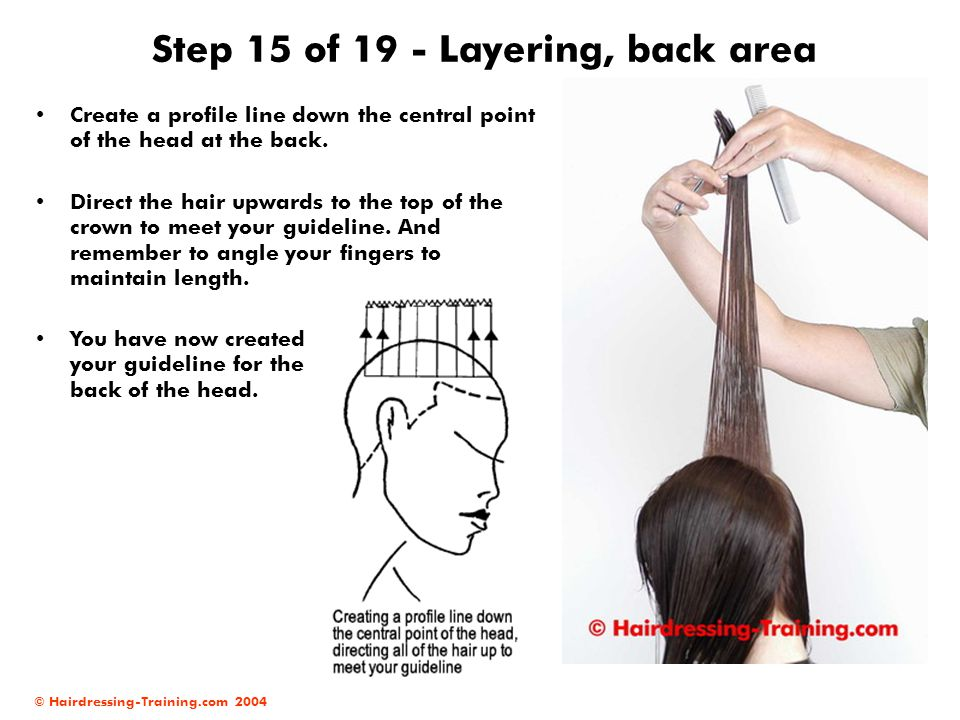 Step 15 of 19 - Layering, back area