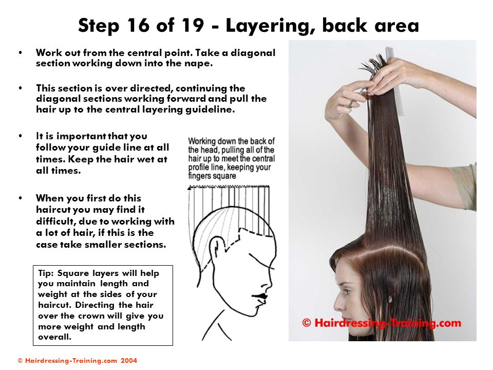 Step 16 of 19 - Layering, back area