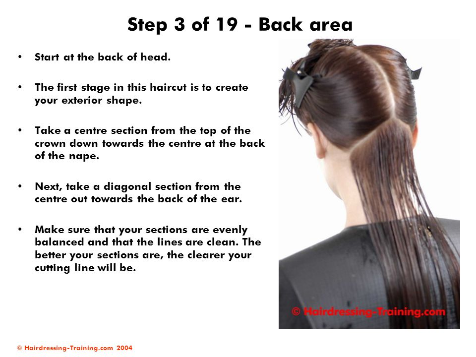 Step 3 of 19 - Back area Start at the back of head.