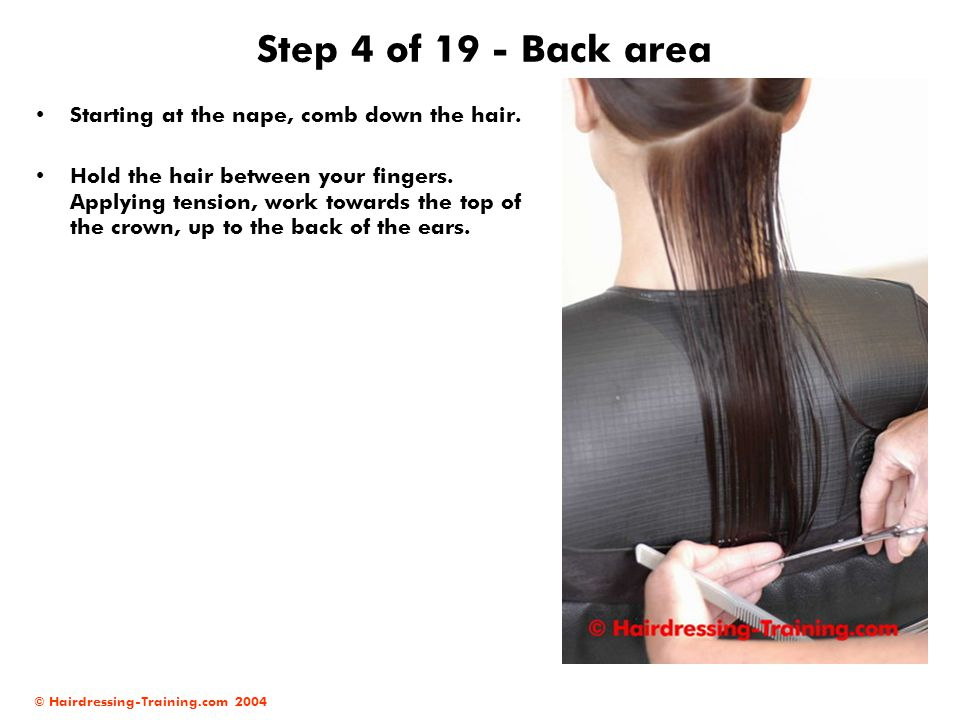 Step 4 of 19 - Back area Starting at the nape, comb down the hair.