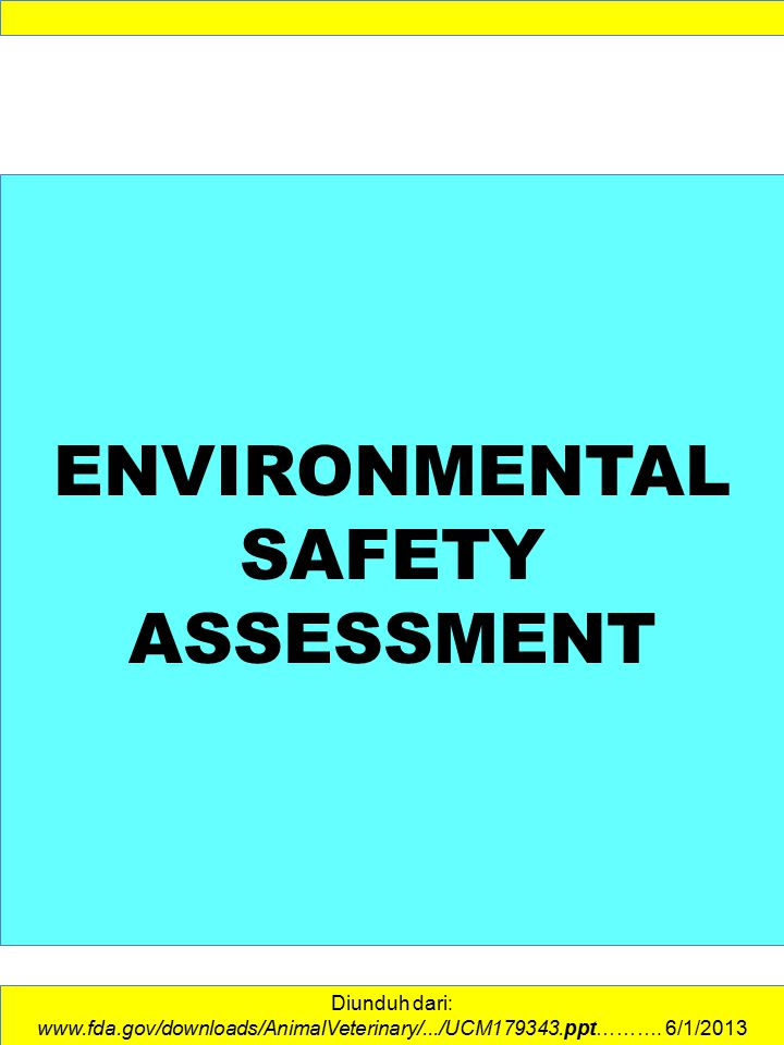 ENVIRONMENTAL SAFETY ASSESSMENT