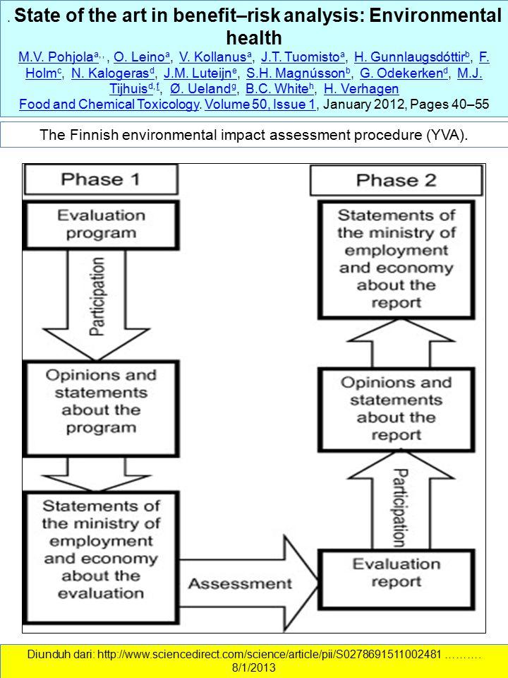 The Finnish environmental impact assessment procedure (YVA).