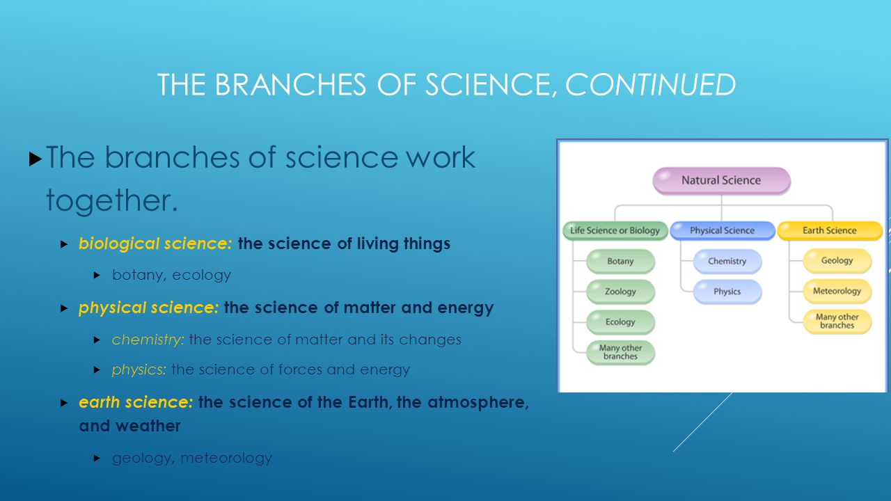 The Branches of Science, continued
