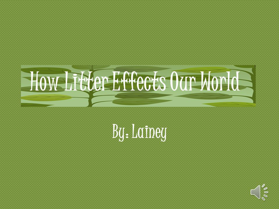 How Litter Effects Our World
