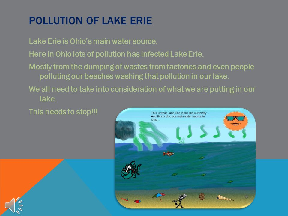 Pollution of Lake Erie