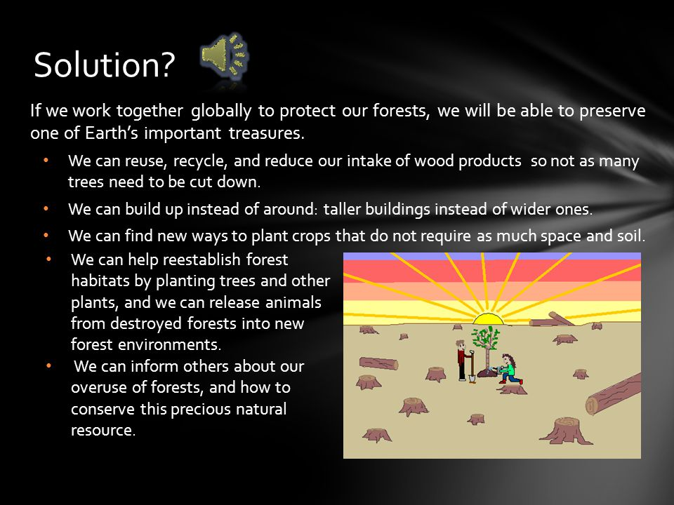Solution If we work together globally to protect our forests, we will be able to preserve one of Earth's important treasures.