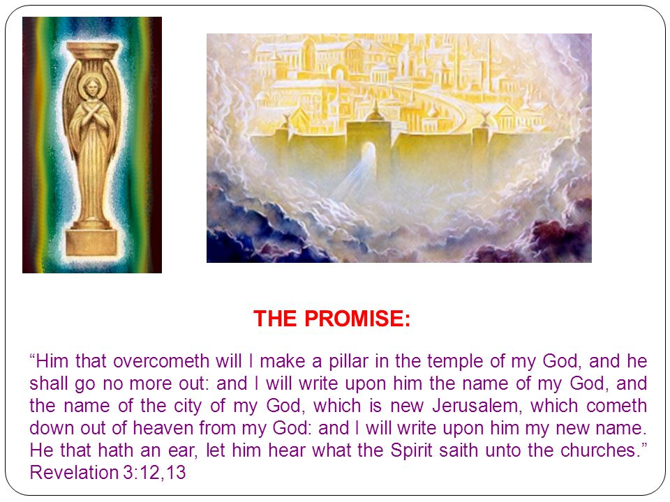 THE PROMISE: