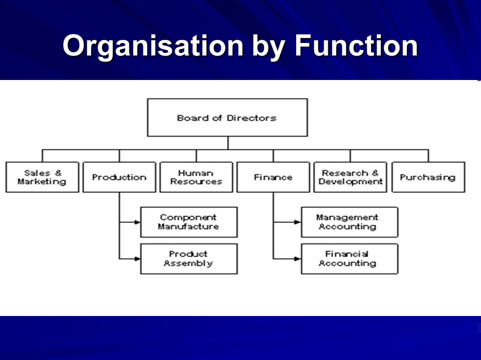 Organisation by Function