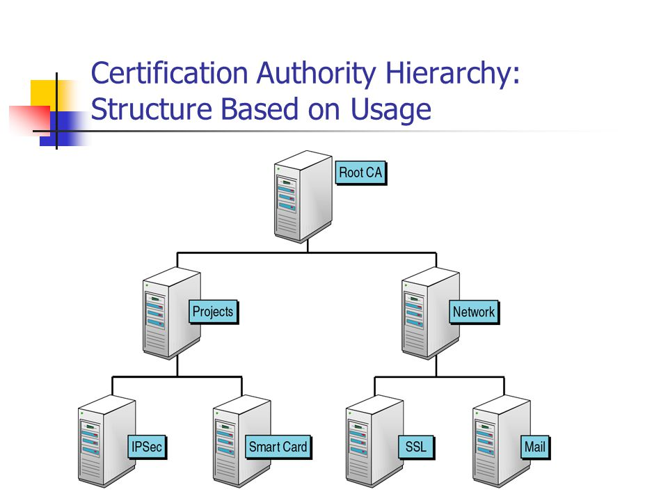 Certification Authority Hierarchy: Structure Based on Usage