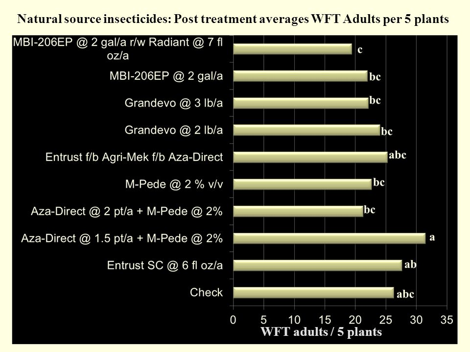Natural source insecticides: Post treatment averages WFT Adults per 5 plants