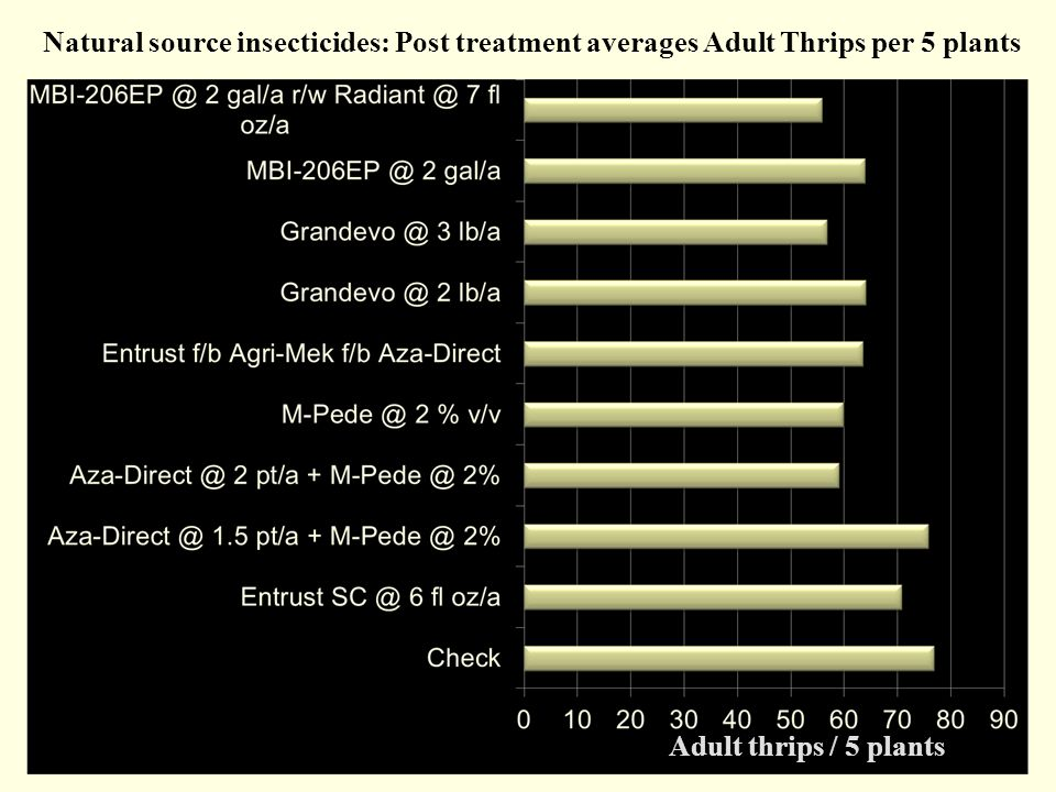 Natural source insecticides: Post treatment averages Adult Thrips per 5 plants