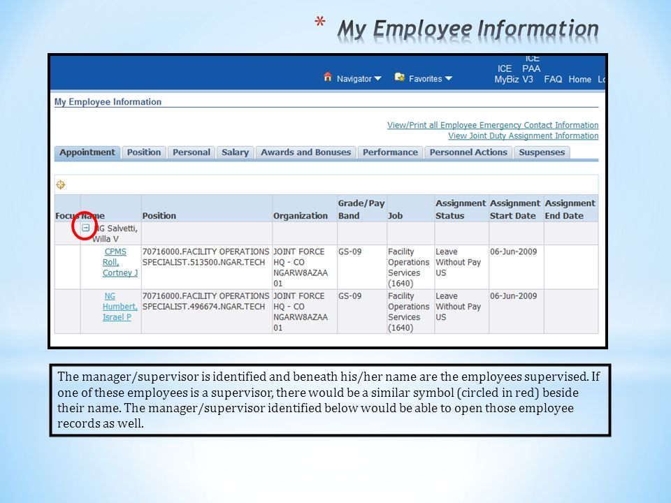My Employee Information