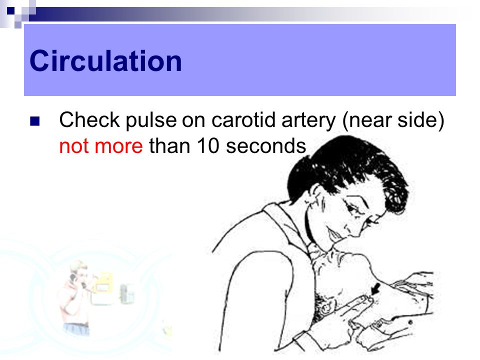 Circulation Check pulse on carotid artery (near side) not more than 10 seconds