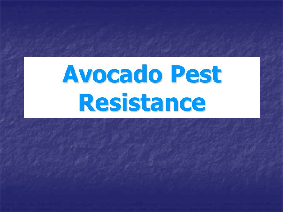 Avocado Pest Resistance