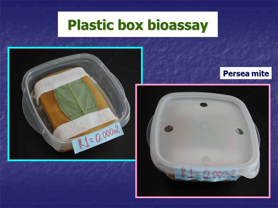 Plastic box bioassay Persea mite