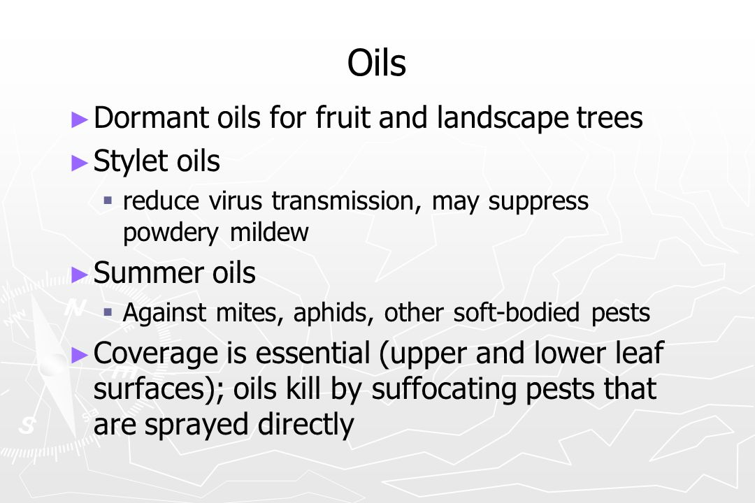 Oils Dormant oils for fruit and landscape trees Stylet oils