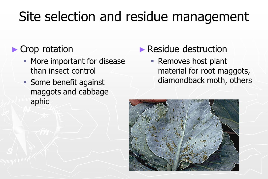 Site selection and residue management