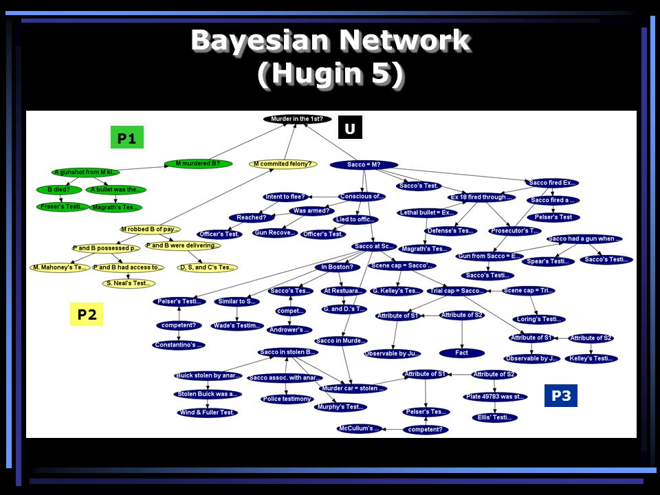 Bayesian Network (Hugin 5)
