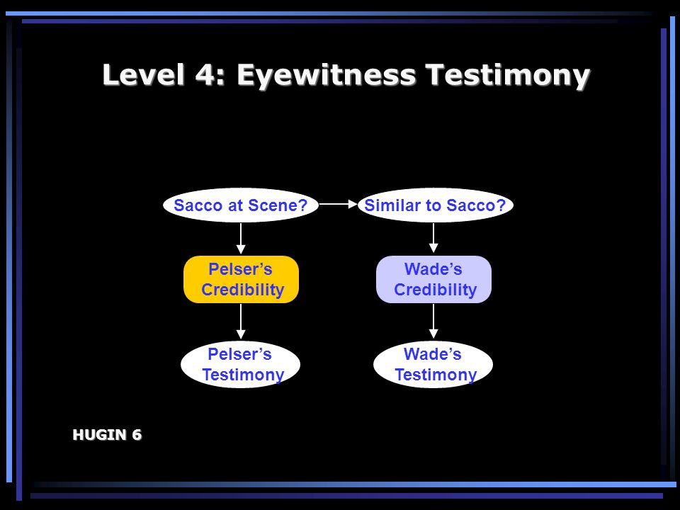 Level 4: Eyewitness Testimony