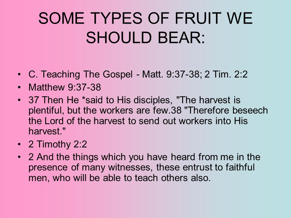SOME TYPES OF FRUIT WE SHOULD BEAR:
