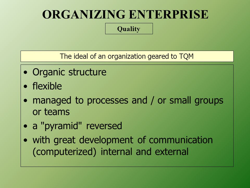 The ideal of an organization geared to TQM