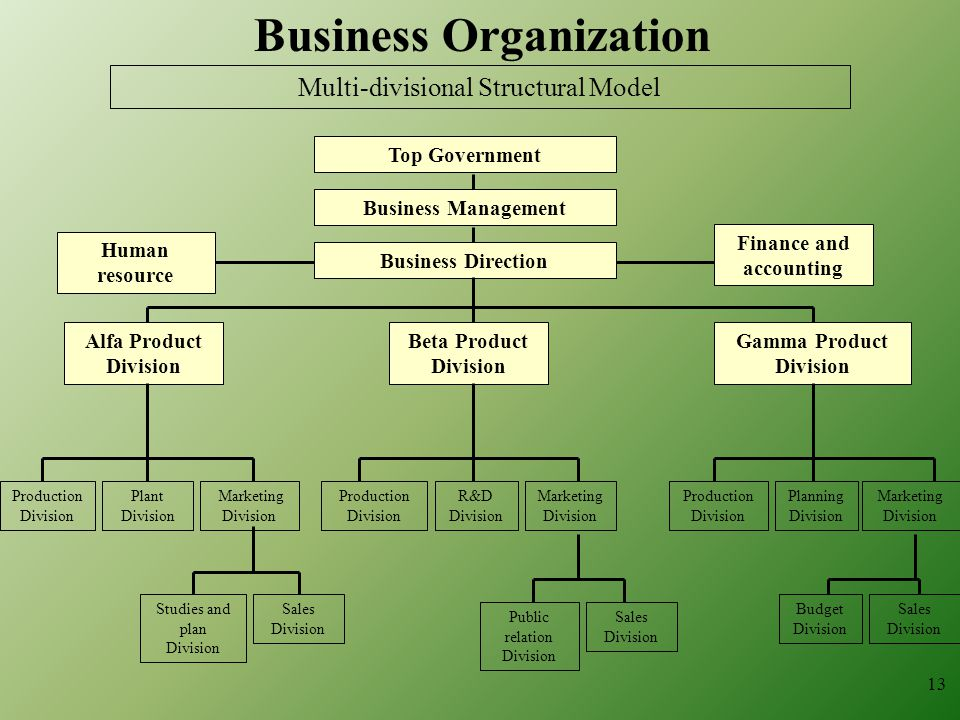 Business Organization Finance and accounting Gamma Product Division