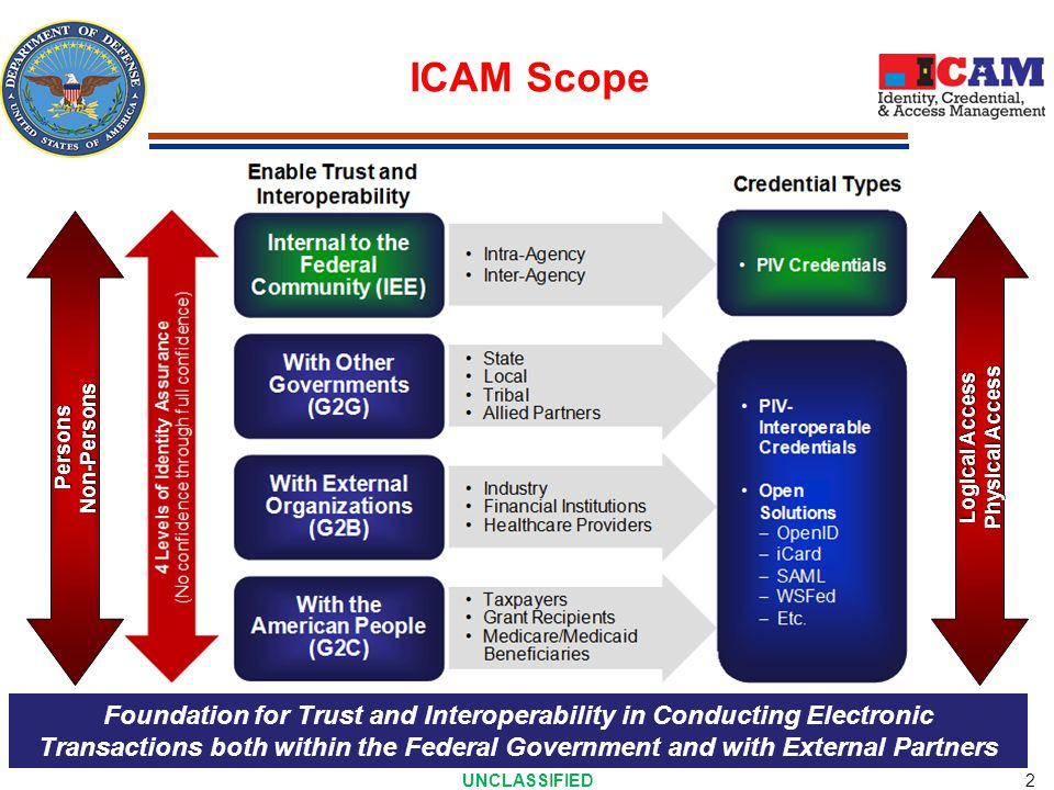 FICAM Governance Structure